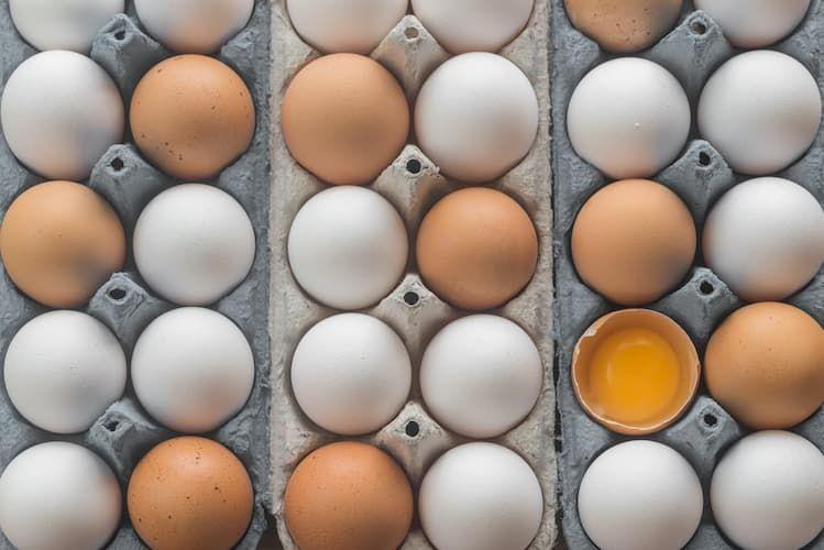 chicken-eggs-pp2fetg.jpg