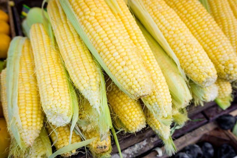 fresh-corn-corn-for-sale-at-farmers-market-puzet6u.jpg