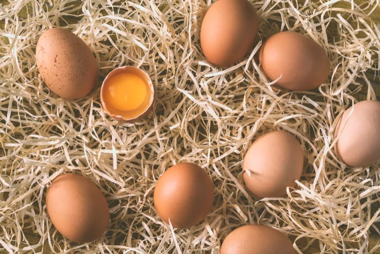 Куры несут яйца без скорлупы: с какими видами вирусных или инфекционных заболеваний может быть связан этот симптом?