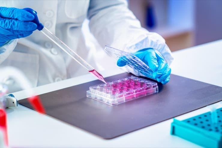 researcher-in-laboratory-hdtwgzr.jpg