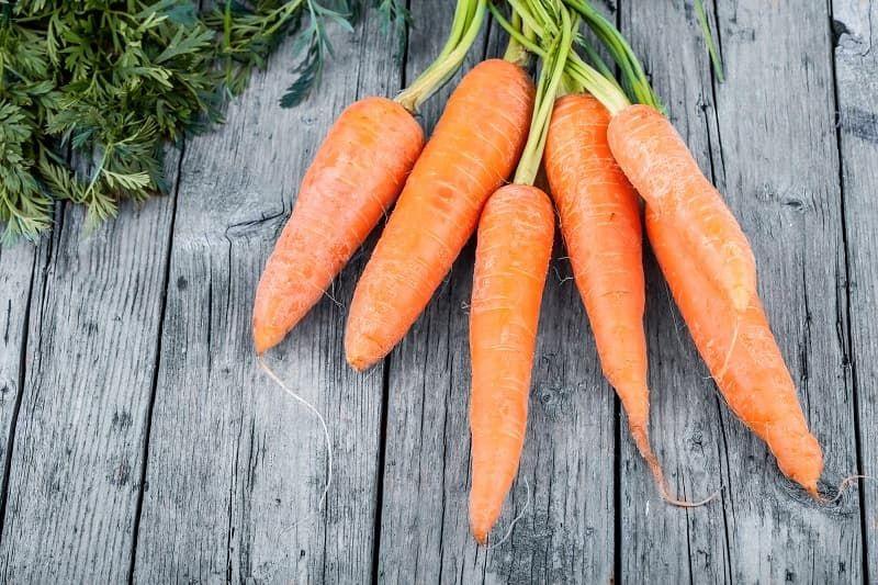 fresh-carrots-p6fh87x.jpg