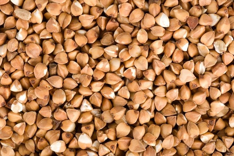 buckwheat-background-p2lke6r.jpg