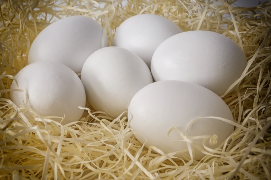 close-up-white-chicken-eggs-on-a-bed-of-straw-pmmt3b2.jpg