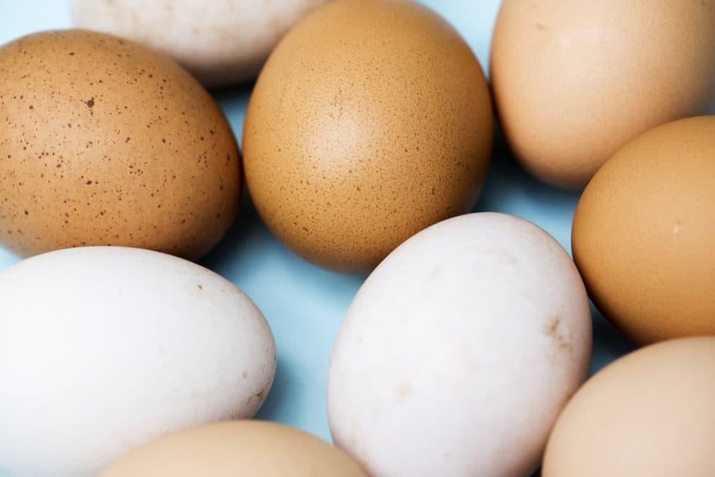 Почему существуют яйца различных цветов? Как определить, какого цвета яйца будет нести курица, и какого цвета будет желток?