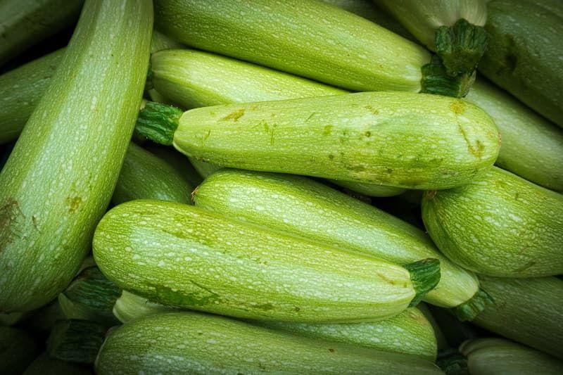 fresh-green-zucchini-zucchini-background-p56jar4.jpg