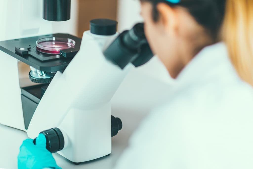 scientist-researching-in-laboratory-p7rnlun.jpg