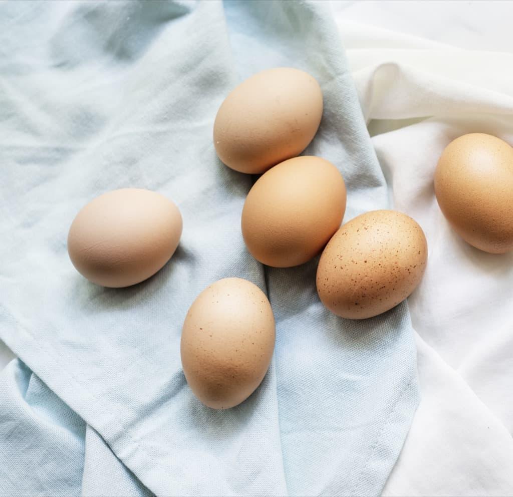 Сколько лет в яйце цыпленку
