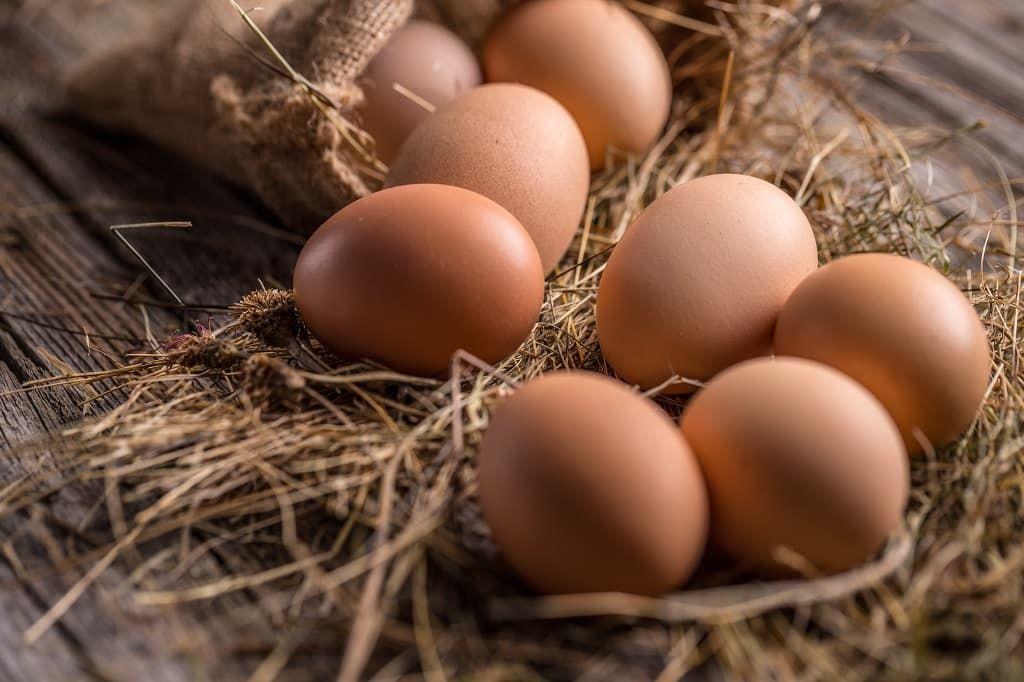 brown-eggs-pf7jhmg.jpg